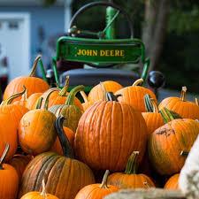 Lane Farms Pumpkin Patch by Sweet Berry Farm