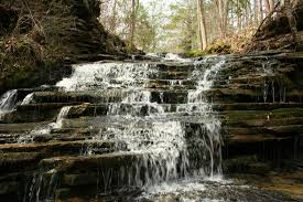 Shells Christmas Tree Farm Tuscumbia Al by I Came Across This Waterfall While Driving In Blount County