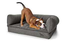 canap pour chien canapé sofa orthopédique pour chien livingstone gris animilo fr