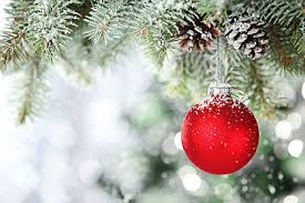Menards Christmas Trees White by Images Of Pick And Cut Christmas Tree Halloween Ideas