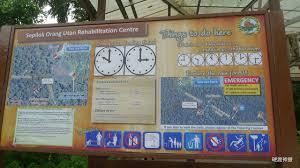 fess馥 au bureau 馬來西亞沙巴 d02 山打根西必洛人猿庇護中心 硬渡神遊