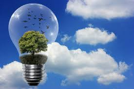 save money with most energy efficient light bulbs electric