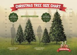 Choosing Your The Perfect Christmas Tree Can Be A Daunting Task Following Steps Will Help You Prepare For Buying New