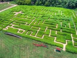 Pumpkin Patch Columbus Wi by 8 Of The Best Fall Corn Mazes In North Carolina In 2017
