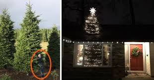 65 Ft Christmas Tree by They Bought A 20ft Christmas Tree And Found A Brilliant Way How
