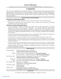 Information Technology Resume Objectives Examples Bunch Ideas Of