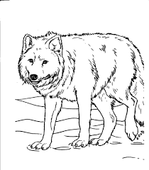 Wolves Coloring Sheets For Kids Page