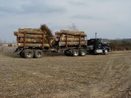 Kentucky | Logging By State | Pinterest | Kentucky And Logging ... Logging Truck Wikipedia Bauer Tree Equipment Used Trucks And For The Peterbilt Log For Sale Truck Pictures Kenworth C500 Self Loading Part 2 Youtube Jasper Ford Dealership New Near French Lick 100 Paper 2118 Best Tren N Images On Royquipcom Cstruction Commercial Sales Western Star Freightliner Mercedesbenz Arocs 3263 Timmerbil 8x4 Logging Trucks Year Intertional Harvester Mule Train 1988 Gmc Brigadier Grapple Sale Sold At Auction April
