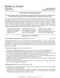 New Sales Director Cv Example Marketing Resume Examples