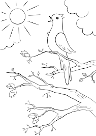 Related Coloring Pages Spring Bird