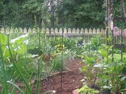 Triyae.com = Mulch Path Backyard ~ Various Design Inspiration For ... Garden Eaging Picture Of Small Backyard Landscaping Decoration Best Elegant Front Path Ideas Uk Spectacular Designs River 25 Flagstone Path Ideas On Pinterest Lkway Define Pathyways Yard Landscape Design Ma Makeover Bbcoms House Design Housedesign Stone Outdoor Fniture Modern Diy On A Budget For How To Illuminate Your With Lighting Hgtv Garden Pea Gravel Decorative Rocks