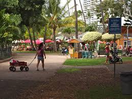 Aloun Farms Pumpkin Patch 2014 by Hawaii Hawaii Real Estate Bizness News
