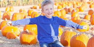 Best Pumpkin Patch Lancaster Pa by 12 Perfectly Pleasant Pumpkin Patches In Pennsylvania