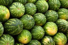 Truck Accident In Andover Spills Watermelons And Fuel, Also Causing ... Boston Car Accident Lawyer Blog Published By Massachusetts Lowell Auto Motorcycle Call The Million Dollar Man Ma Top Bicycle Lawyers At Morgan Cyclists Want Truck Driver Charged After Fatal 2015 Crash Cbs Pedestrian Attorney Taunton Somerville Ma Best 2018 Peabody Officers Respond To Three Vehicle With Injuries March 2014 Information Motor Tips To Avoid A Or Injury Schulze Law Automobile Work Personal