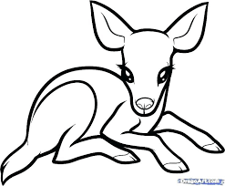 Forest Animal Coloring Pages Animals Fores On Color By Number Easy Plus Numb