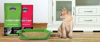 best cat litter boxes world s best cat litter meet