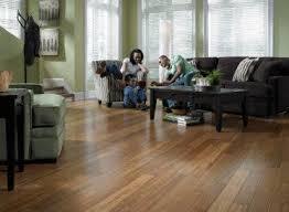 Lumber Liquidators Cork Flooring by 43 Best Bamboo Flooring Images On Pinterest Lumber Liquidators