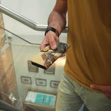 Mens leather phone case wallet folio strap microsuction Tiger print Tovi Sorga