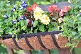 Horse Trough Bathroom Sink by Horse Trough Planter Creating A Raised Herb Garden From Water