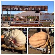 South San Jose Pumpkin Patch by Spina Farms Pumpkin Patch In San Jose Ca Cute Went Here When