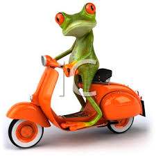 Frog Riding A Motor Scooter