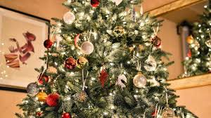 Which Christmas Tree Smells The Best Uk by Why Real Christmas Trees Are Better Than Fake Ones