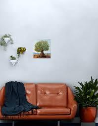 olivenbaum metallbild