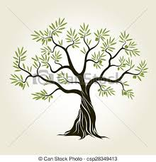 Vector Color Olive Tree With Green Leafs