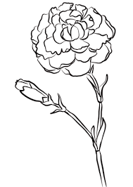 Click To See Printable Version Of Carnation Chomley Farran Coloring Page