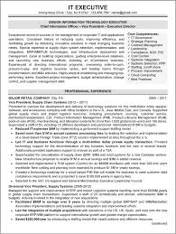 Executive Resume Samples Sample 1 It Career Resumes