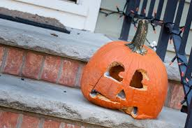 Keep My Pumpkin From Rotting by How To Keep Bugs Out Of Your Jack O Lantern Vulcan Termite