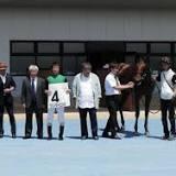 オルフェーヴル, 新馬, 競走馬の血統, 牡馬, 栗東トレーニングセンター, 須貝尚介