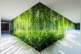 plante de bureau nature au bureau le bien être au bureau passe aussi par les plantes