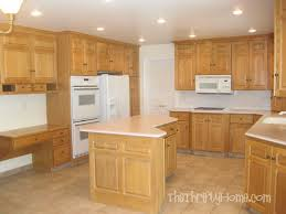The Thrifty Home Kitchen Remodel