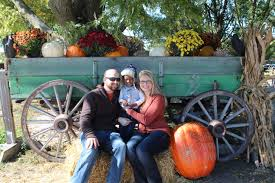 Pumpkin Picking Patchogue Ny by Day Farms Pumpkin Patch Home Facebook