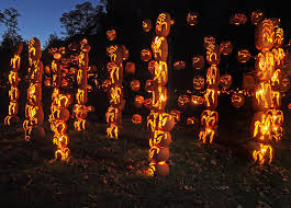 Great Pumpkin Blaze by Q U0026a The Life And Times Of A Pro Pumpkin Carver