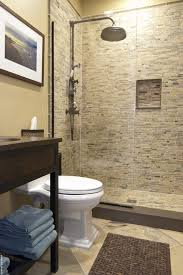 bathroom neutral colors bathroom eclectic with pebble tile shower