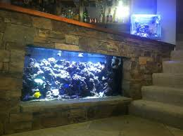 Fish Tank Bar | Saltwaterfish Forum I Really Want A Jellyfish Aquarium Home Pinterest Awesome Fish Tank Idea Cool Ideas 6741 The Top 10 Hotel Aquariums Photos Huffpost Diy Barconsole Table Mac Marlborough Tank Stand Alex Gives Up Amusing Experiments 18 Best Fish Images On Aquarium Ideas Diy Clear For Life Hexagon Hayneedle Bar Custom Tanks Ponds Designs For Freshwater Modern 364 And Tropical Ov Cylinder 2