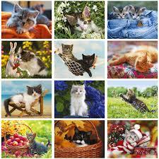 20 CATtitudes Note Cards Current Catalog