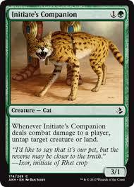 cats on deck magic duels deck lol cats magic duels helper