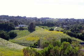 Pumpkin Farm In Palos Hills by Chandler Preserve Scenic Hike In Rolling Hills Estates