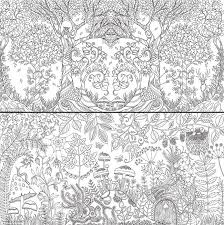 Enchanted Forest Foret Enchantee By Johanna Basford L Her First Colouring In Book For Secret GardenColoring