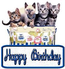 Cute Cats Wishing Happy Birthday