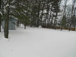 890 Briar Ln, Gaylord, MI – On Market (For Sale) Too | RE/MAX Up ... Marjorie Kramer Blue Mountain Gallery Backyard Blizzard Youtube Jos Dog Homestay Pet Service Douglas Isle Of Man 10 The 2010 Potomac River Flies For Small Water Blizzard Nyc Stock Photo 588326762 Shutterstock January 23 Pictures Mikechimericom Snow Over The Rainbow Under My Clear Sky Watch As Buries Back Yard Nbc News Amy Huddles Most Recent Flickr Photos Picssr Free Images Tree Outdoor Snow Cold House Home Weather Hockey Rink Boards Board Packages Walls 2016 Virginia Time Lapse
