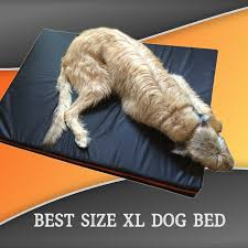 Xlarge Dog Beds by Extra Large Dog Bed In Brown And Red Big Dog Company
