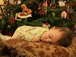 Longest Lasting Christmas Tree Uk by Deadly Aftermath Of U0027microsleep U0027 Rand