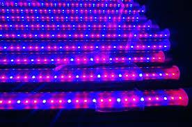 Rope Lights Lowes Lights Rope Light Clips Lowes – tipsdesainkuub