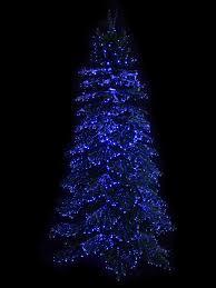 Tabletop Fibre Optic Christmas Tree by Dynamic Starry Night U0026 Static Light Fibre Optic Tree 2 3m