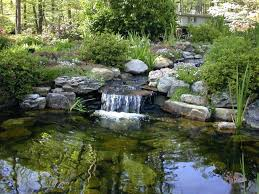 Garden Ponds With Waterfalls – Satuska.co Backyards Mesmerizing Pond Backyard Fish Winter Ideas With Waterfall Small Home Garden Ponds Waterfalls How To Build A In The Exteriors And Outdoor Plus Best 25 Waterfalls Ideas On Pinterest Water Falls Pictures Filters For Interior A And Family Hdyman Diy Fountains Above Ground Satuskaco To Create Stream For An Howtos 30 Diy Your Back Yard Waterfall