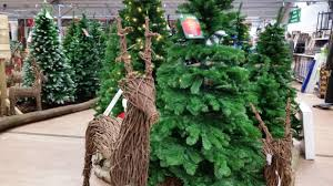 Balsam Christmas Trees Uk by Christmas Has Arrived At Longacres